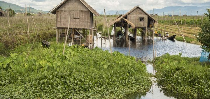 Cheap way to see Inle lake from boat